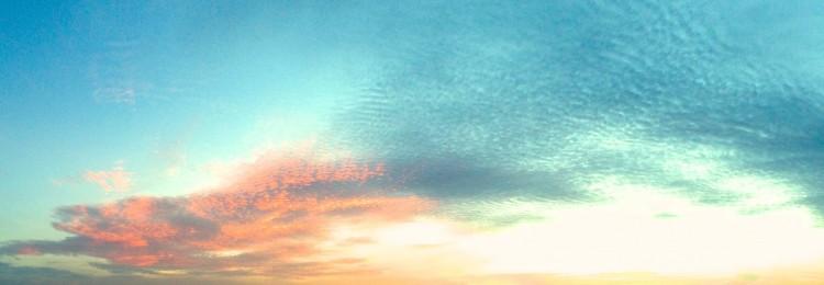 cropped-img_2388-version-2.jpg